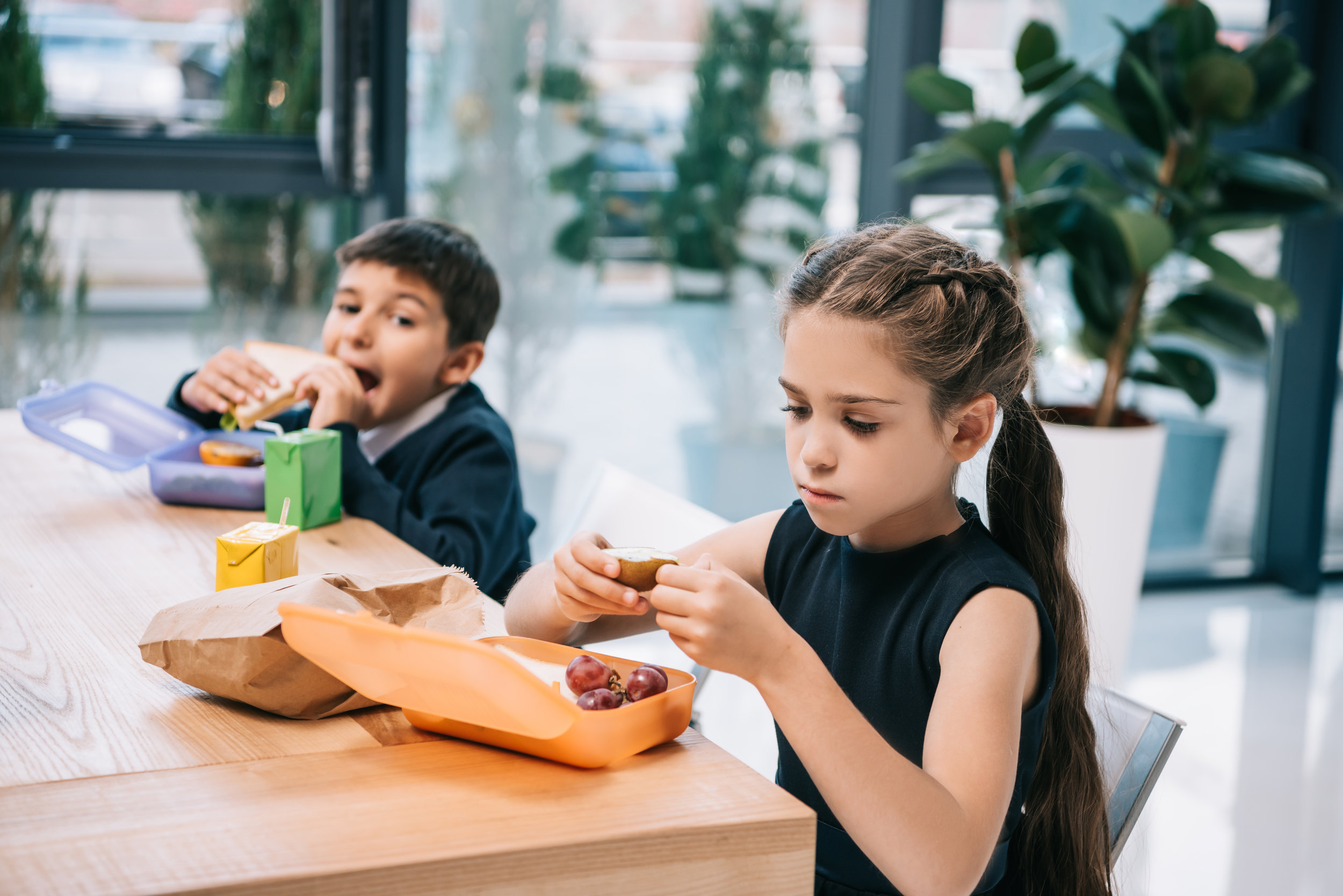 Making Lunches for Highly Sensitive Kids