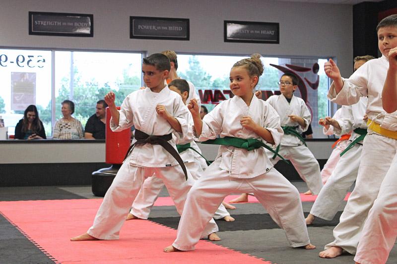 American Karate Youth Karate class preparing for side kicks