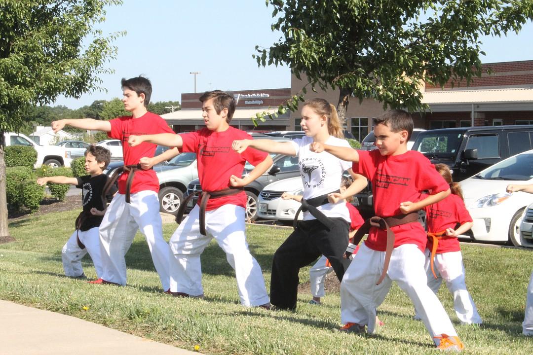 American Karate Summer Camp 2015
