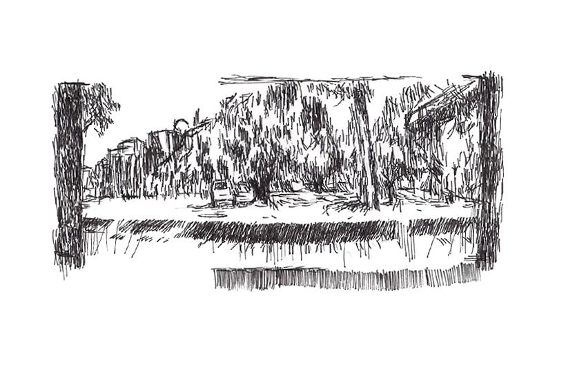Drawing en plein eir. Curtin University, 2010.