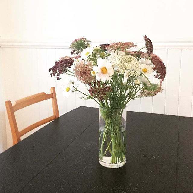 Late summer Queen Anne's lace. How is it already farewell to summer? I'll savor it a little while longer with these blooms fresh from the garden. . . . . #queenanneslace #wildflowers #latesummer #kitchen #blacktable #modernrustic #simplepleasures #laborday