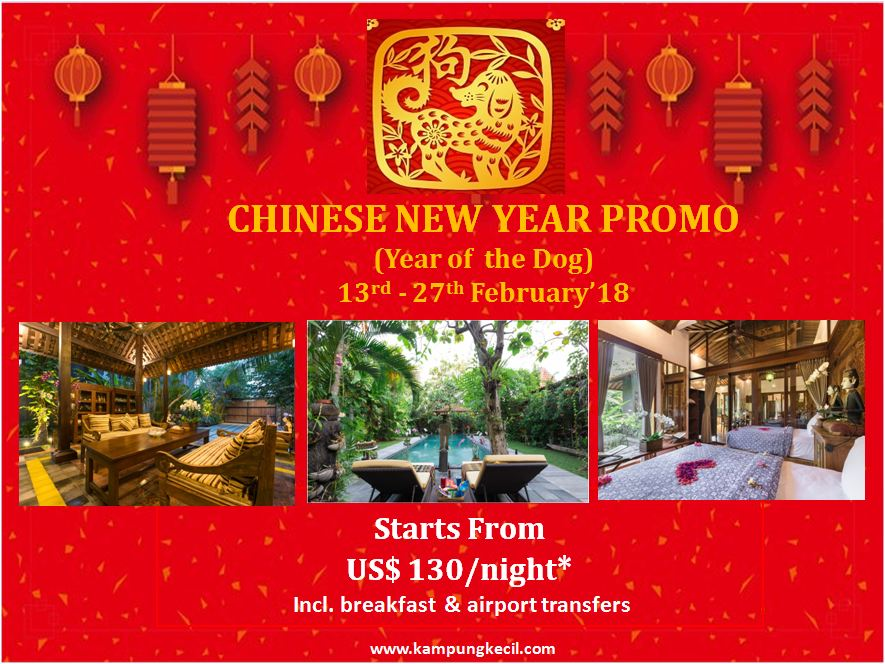Chinese New Year Promo.JPG