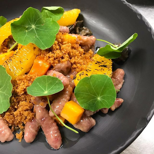#countylicious is in full swing. Blast your consciousness with our beet cavatelli, with snail, mussel, squash and orange.
