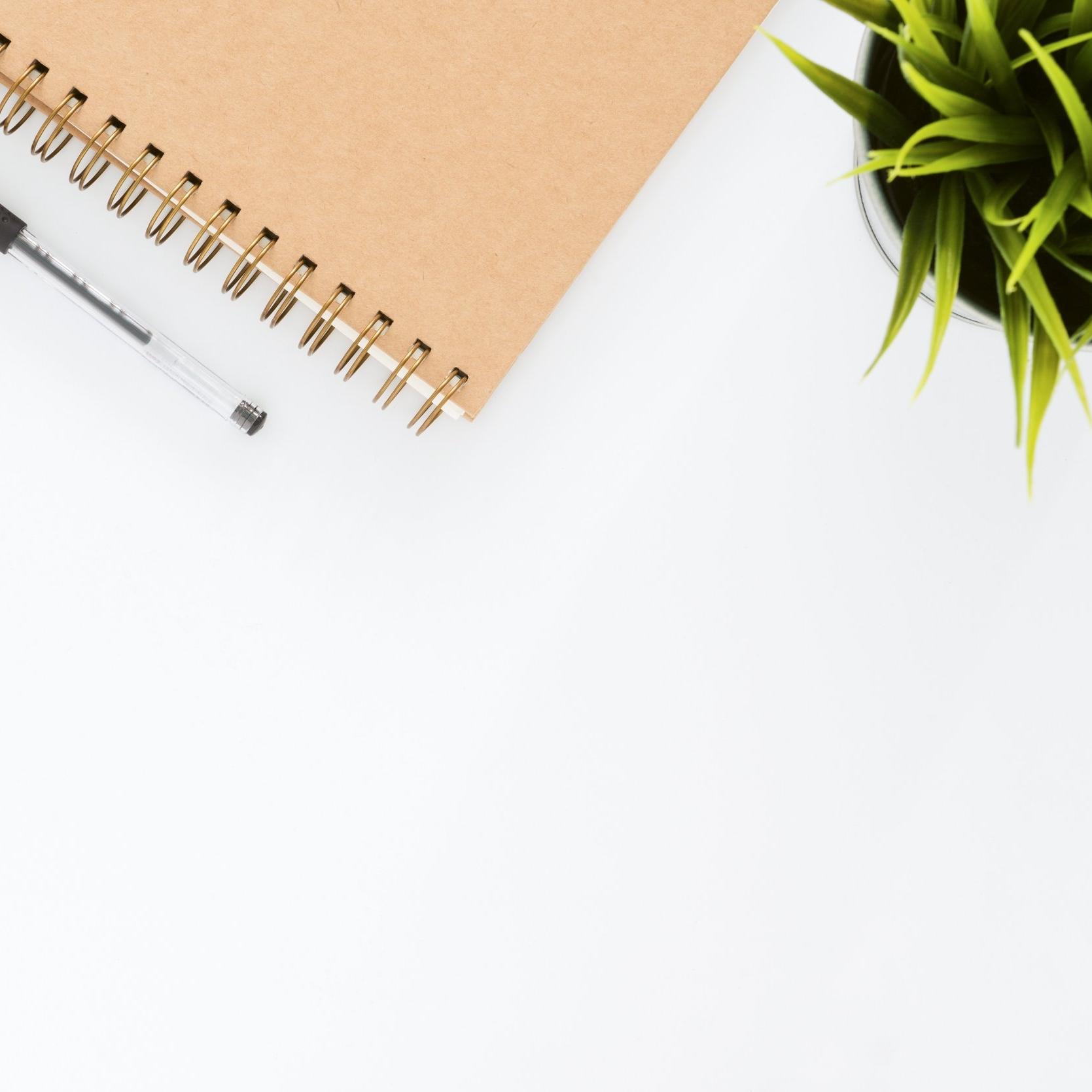 career-job-coaching-online.jpg