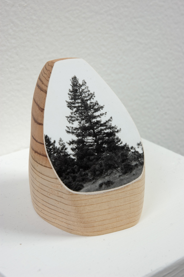 "Timber, 2011, gelatin silver print on redwood, 3.5"" x 2"" x 2.5"""