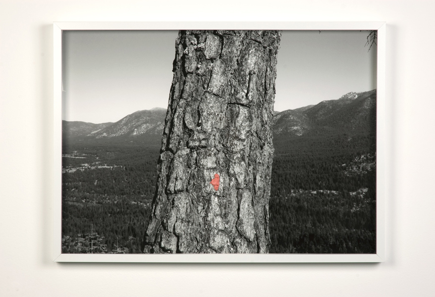"Gum Print, 2012, archival pigment print with chewing gum, 20.5"" x 28.5"""