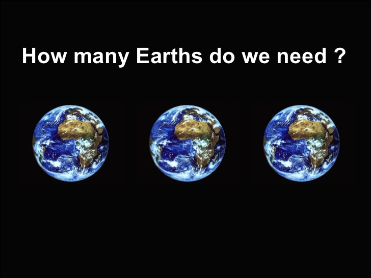 ecological footprint on the planet