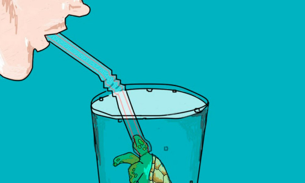 Sin popote por favor No Straw please! Save the Oceans. Save the Sea Turtles. Tours inTulum Mexico