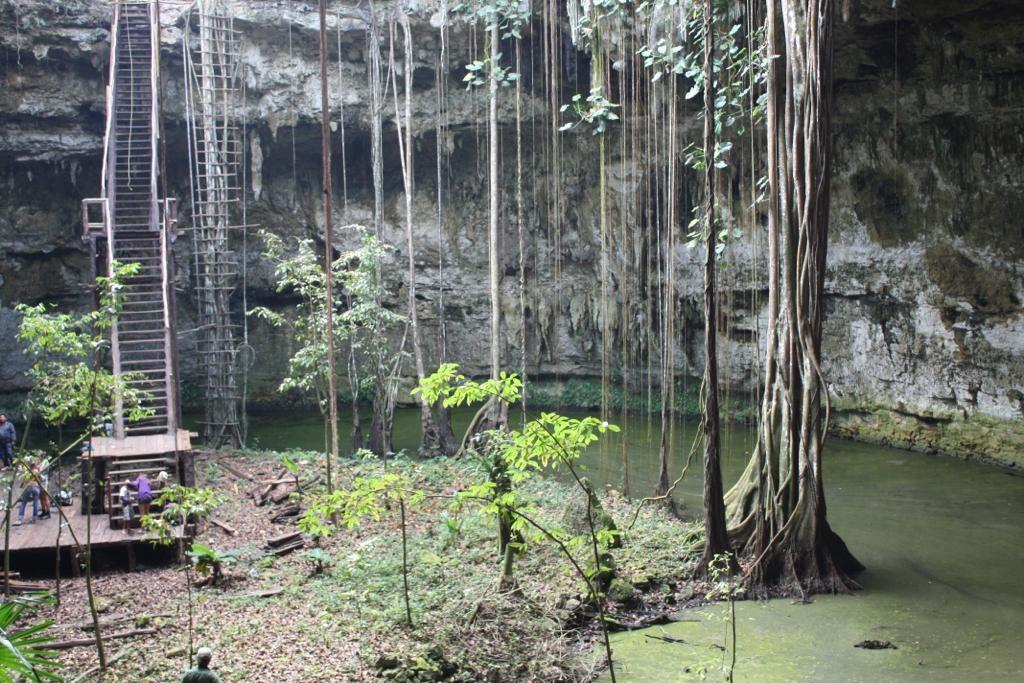 Semi Open Cenote Riviera Maya