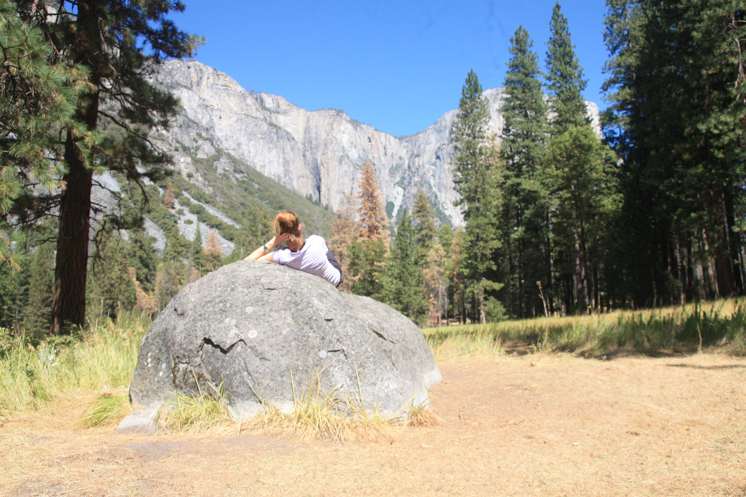 Yosemite Ecotourism with green Maya