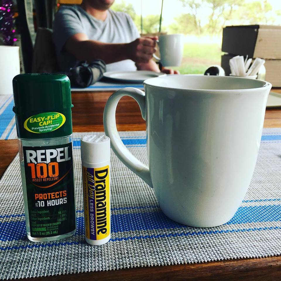 Bug spray, non-drowsy Dramamine and caffeine. What else does one need?