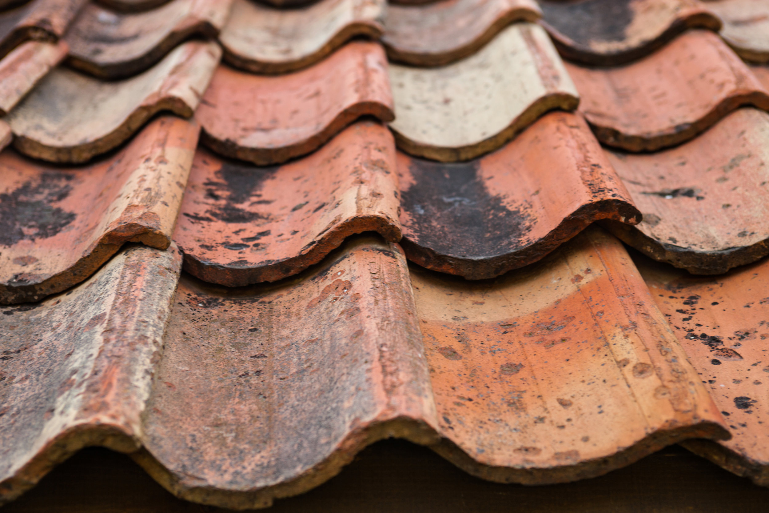 Clay Pantile Roof Tile