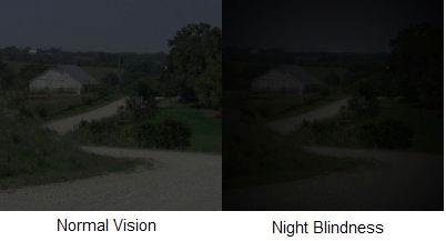 nightblindnesscompare.jpg