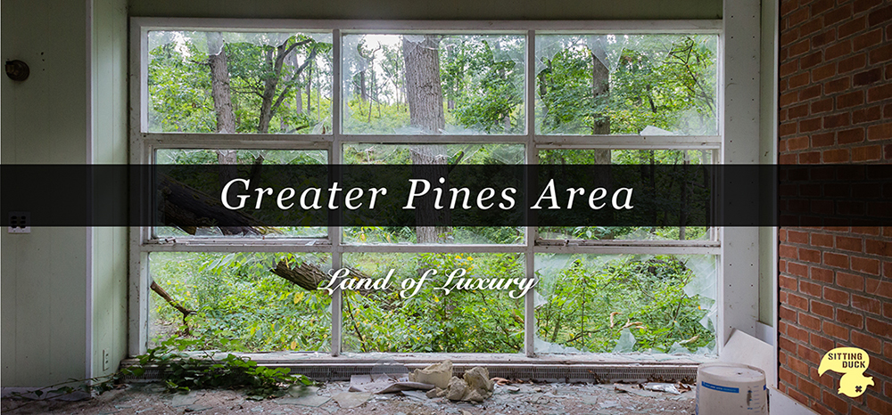 Billboard Design for the Greater Pines Area: Land of Luxury.