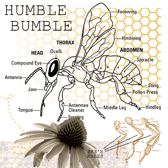 93/100: Be humble; Be kind.