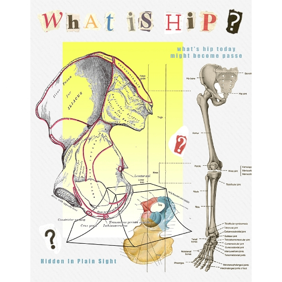 58/100: What is Hip?