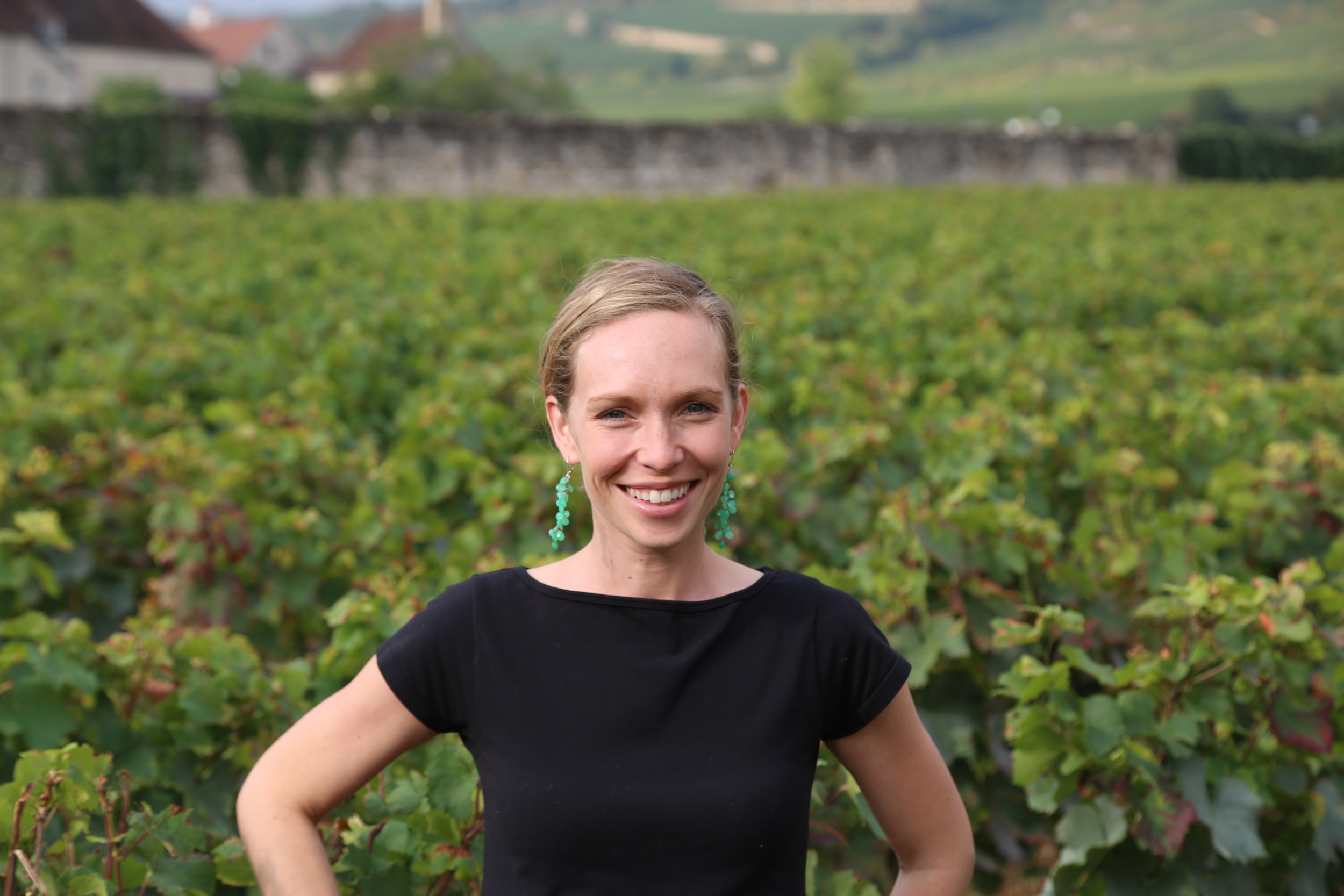 Diana Snowden Seysses, Winemaker - Diana Snowden Seysses, Californian by birth, Burgundian by adoption, just celebrated her 20th harvest in 2018. Since graduating the University of California at Davis with a BS in Viticulture and Enology she has split her wine making time between Napa and Burgundy, taking inspiration and instruction from both beautiful landscapes.