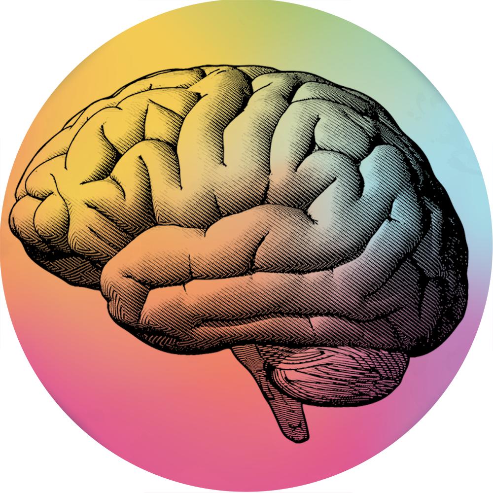 Brain-CalendarImage-1.png