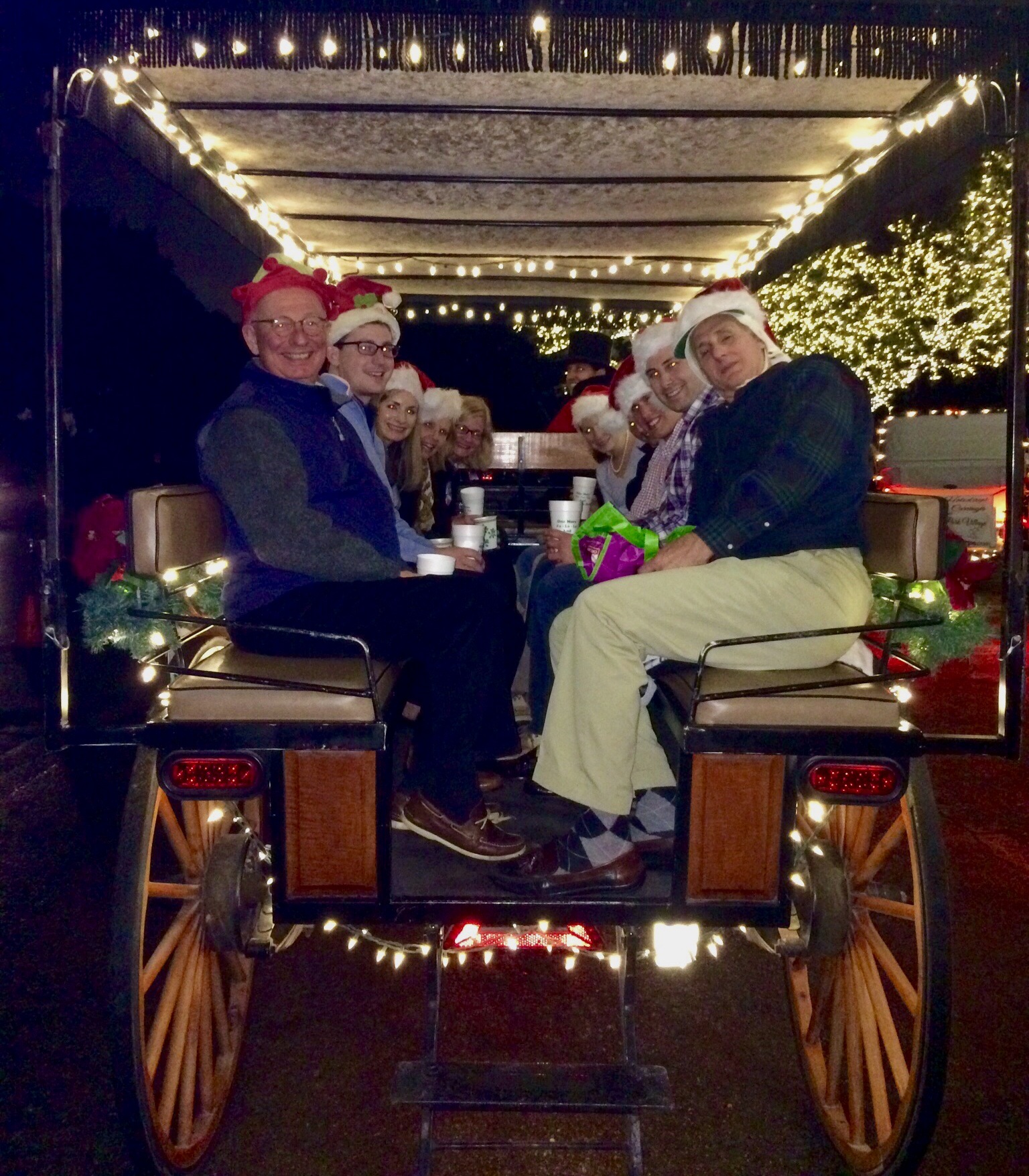 The Palmas and Happy Horners on their annual carriage ride through Dallas' finest light displays.