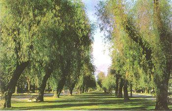 The Bridle Path, Upland, CA. Image via Pinterest.