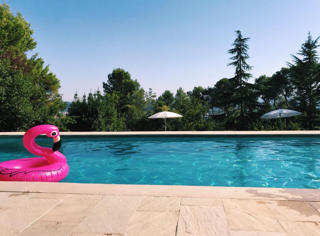 Pedro the Flamingo hidden amongst the San Bartolo hills of Pesaro.