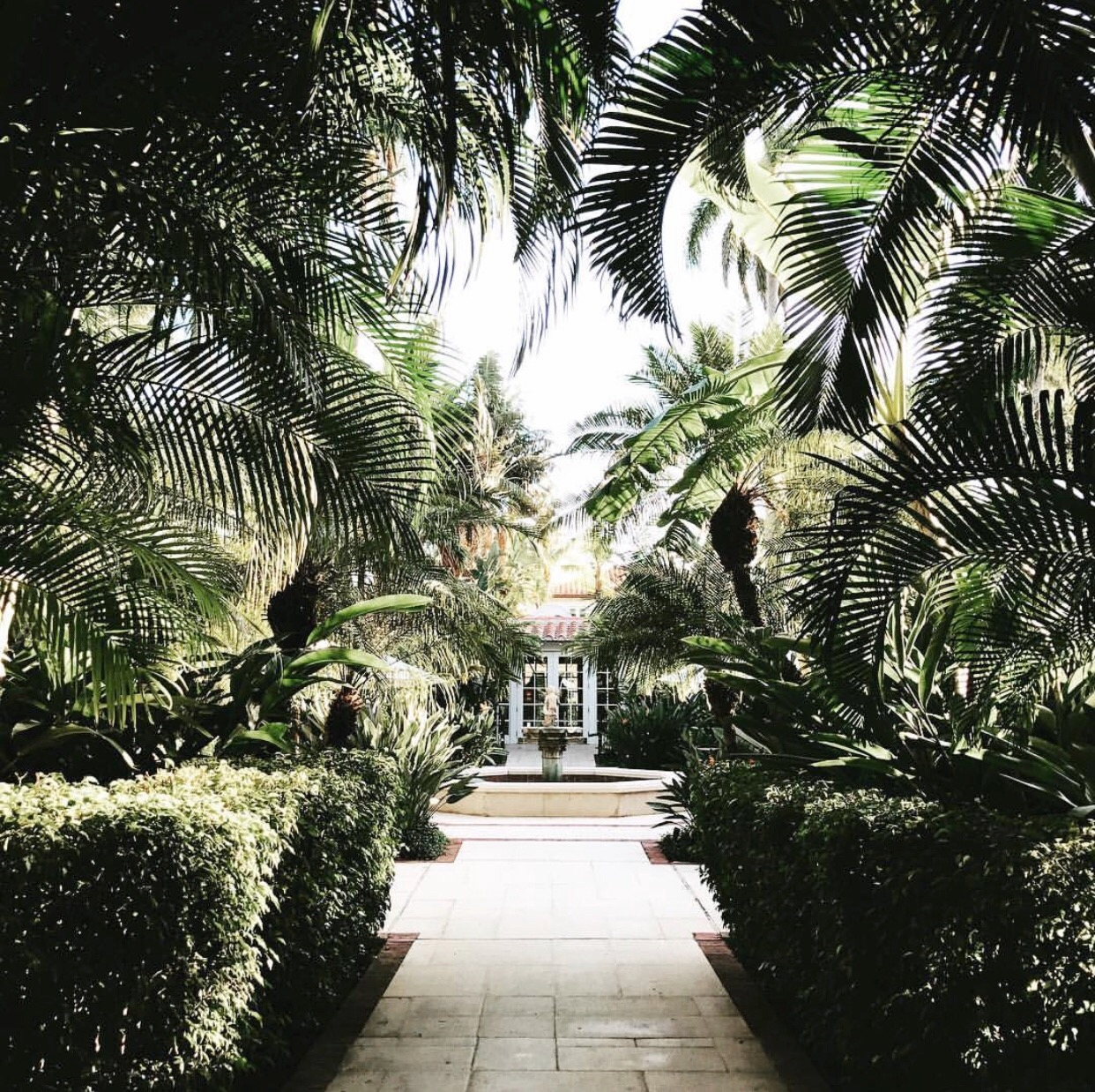 How stunning is this vegetation at The Brazilian Court Hotel?