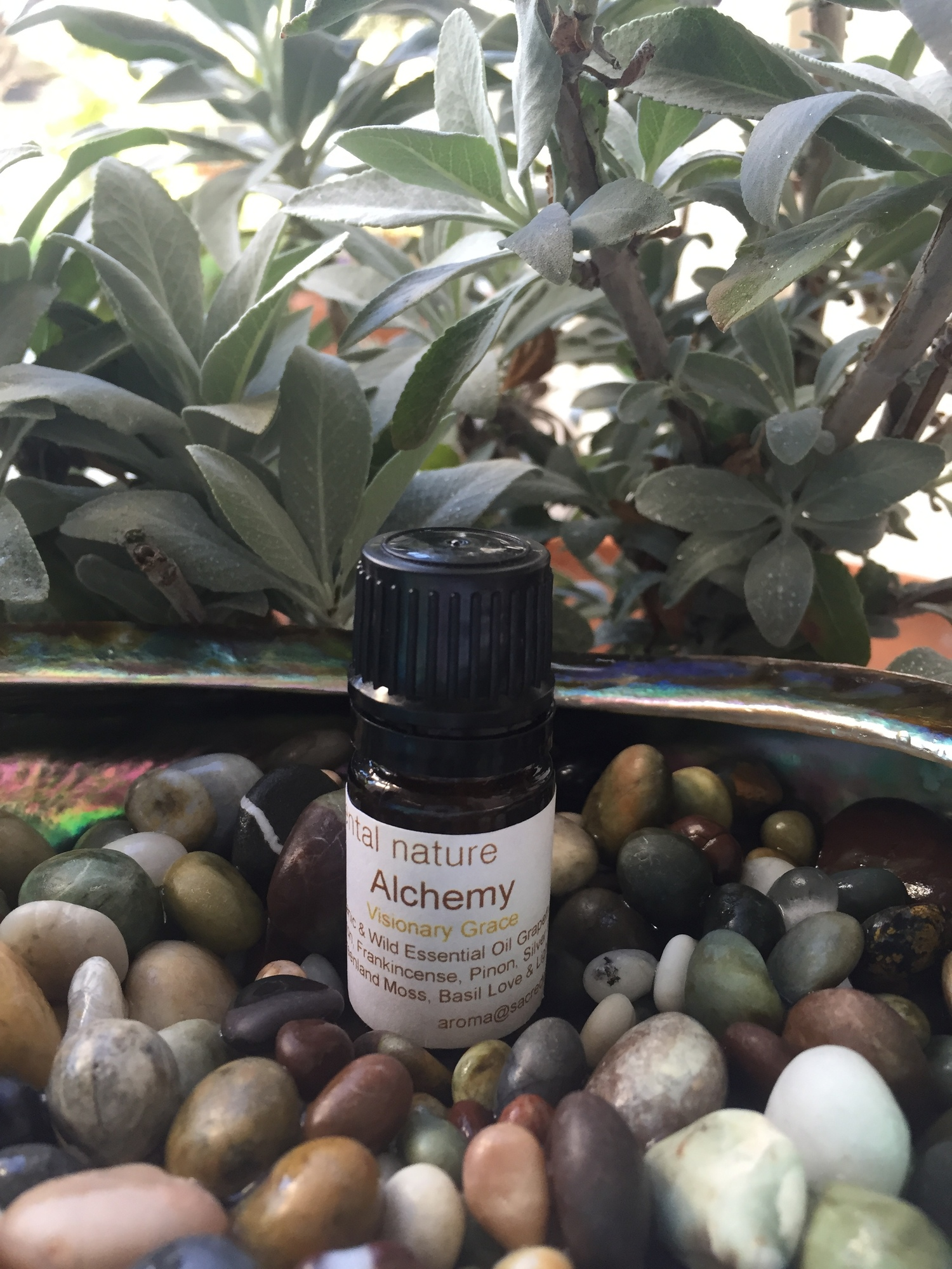 Peppermint leaf drop oil.jpg