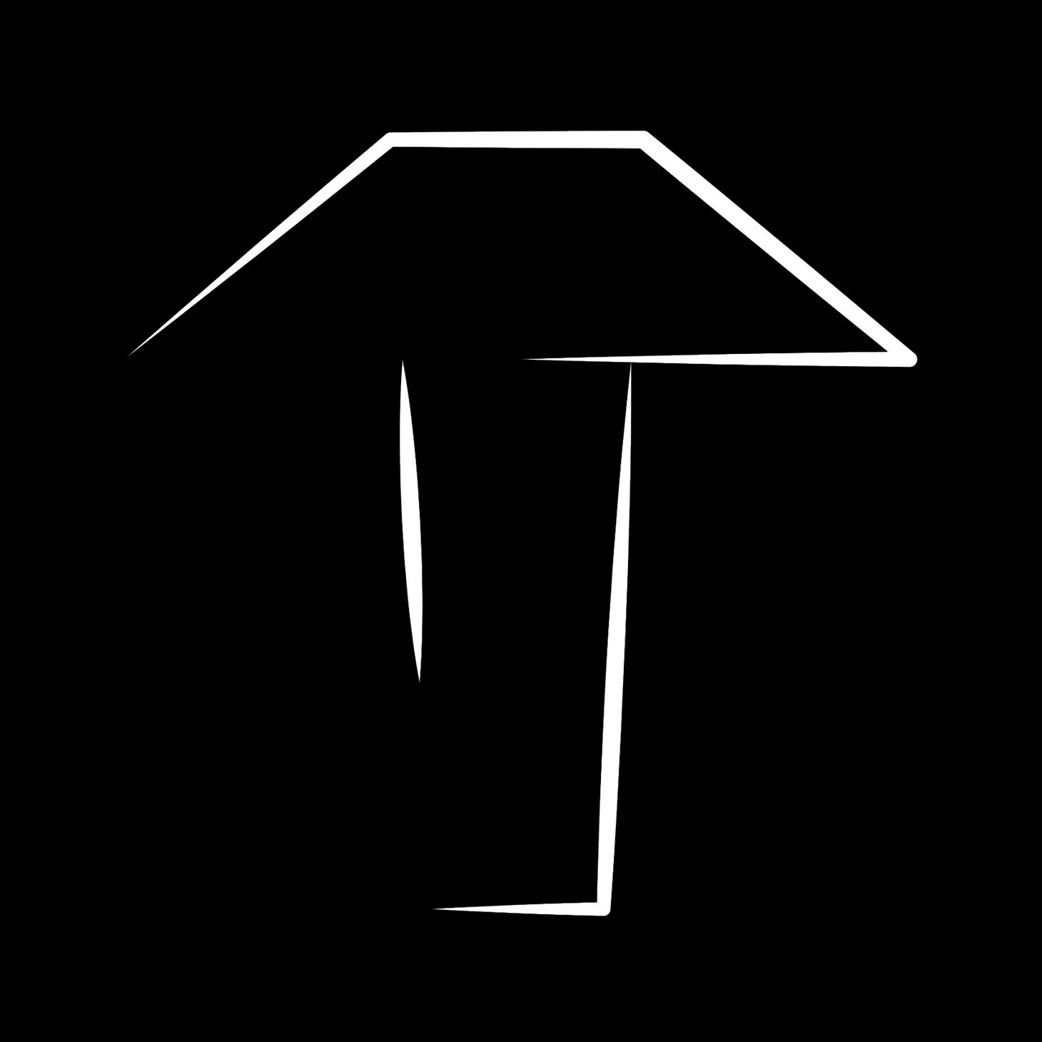 Dusk Motion official logo black background
