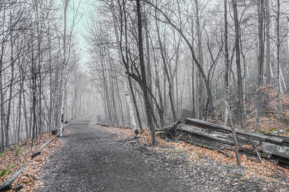 Foggy Wallkill Valley Rail Trail, Rosendale, NY, December 201510.jpg