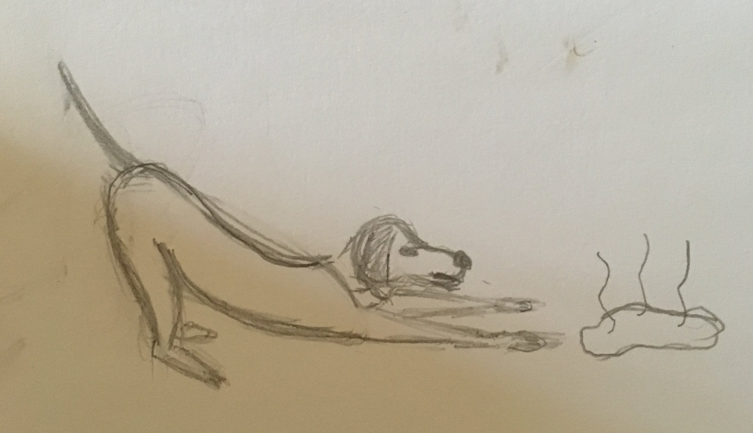 My attempt at drawing a dog puking. Yup that's a Doritos stain in the top right corner.