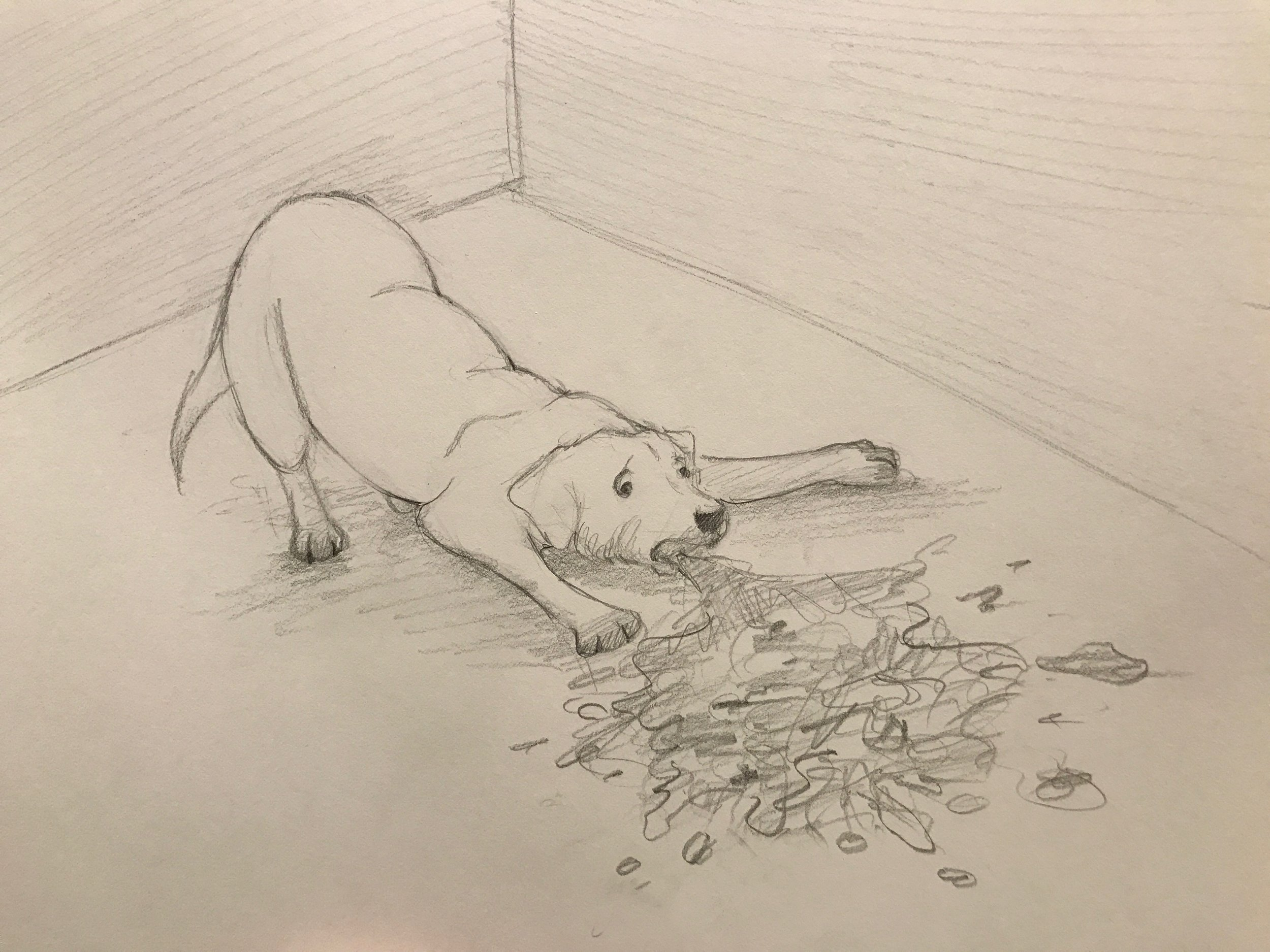 Christine's rendition of a dog barfing. Freakin' Baller!!!!