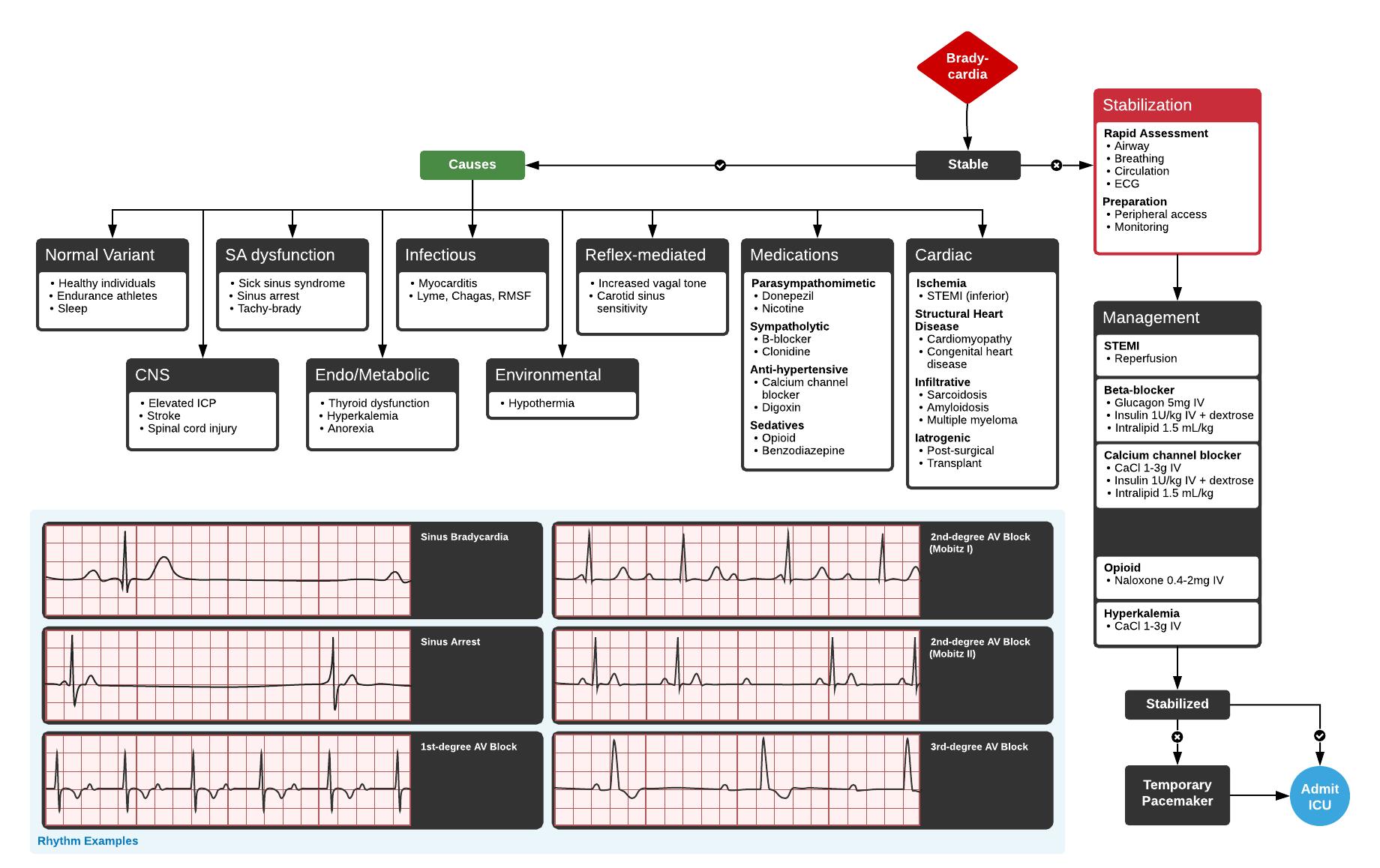 Full ddxof.com article and algorithm on Bradycardia can be found at  https://ddxof.com/?_sf_s=bradycardia