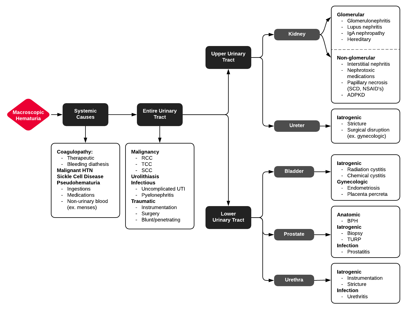 Full ddxof.com article for Macroscopic Hematuria can be found at  https://ddxof.com/macroscopic-hematuria/