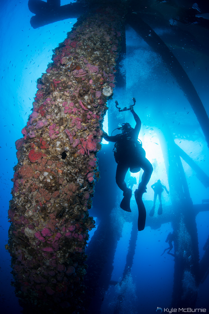 Converting rigs to Reefs: The New York Times