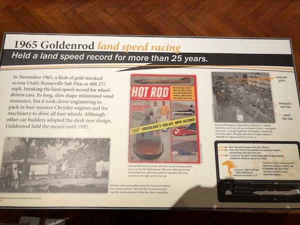 HF.goldenrod.2.jpg
