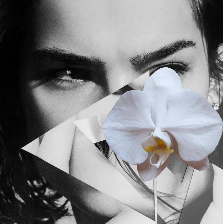 Dina-Broadhurst-Ambiguous-Beauty-2-Artist.png