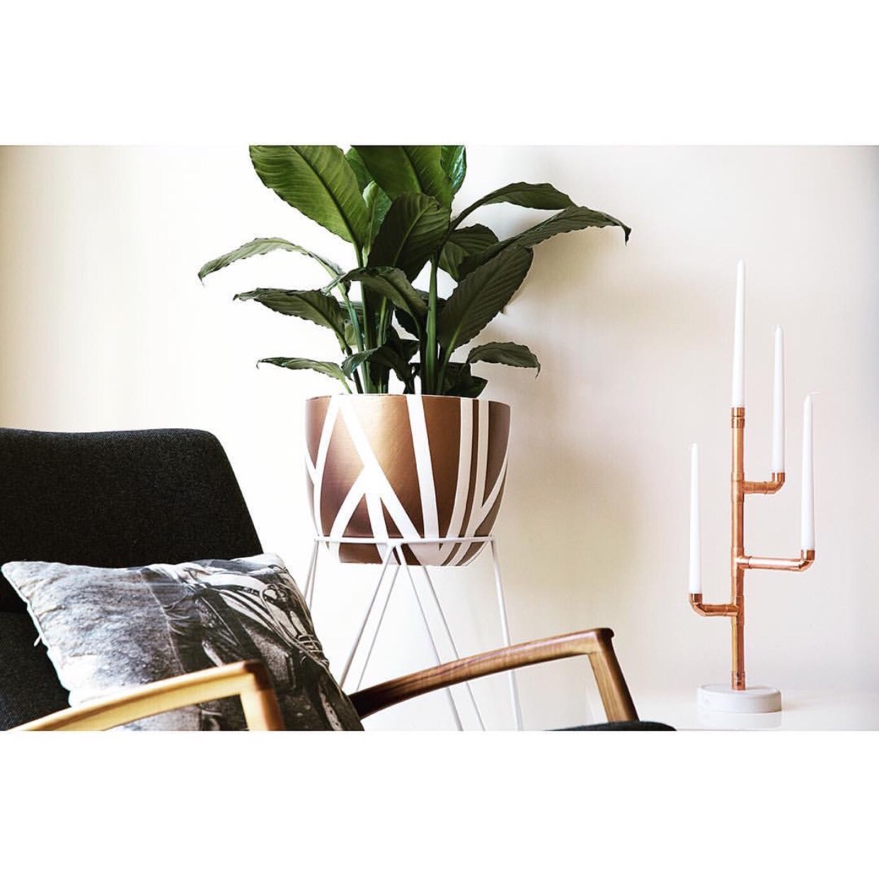 Bronze Gold Charlottes web and Zeus plant stand in white .jpg