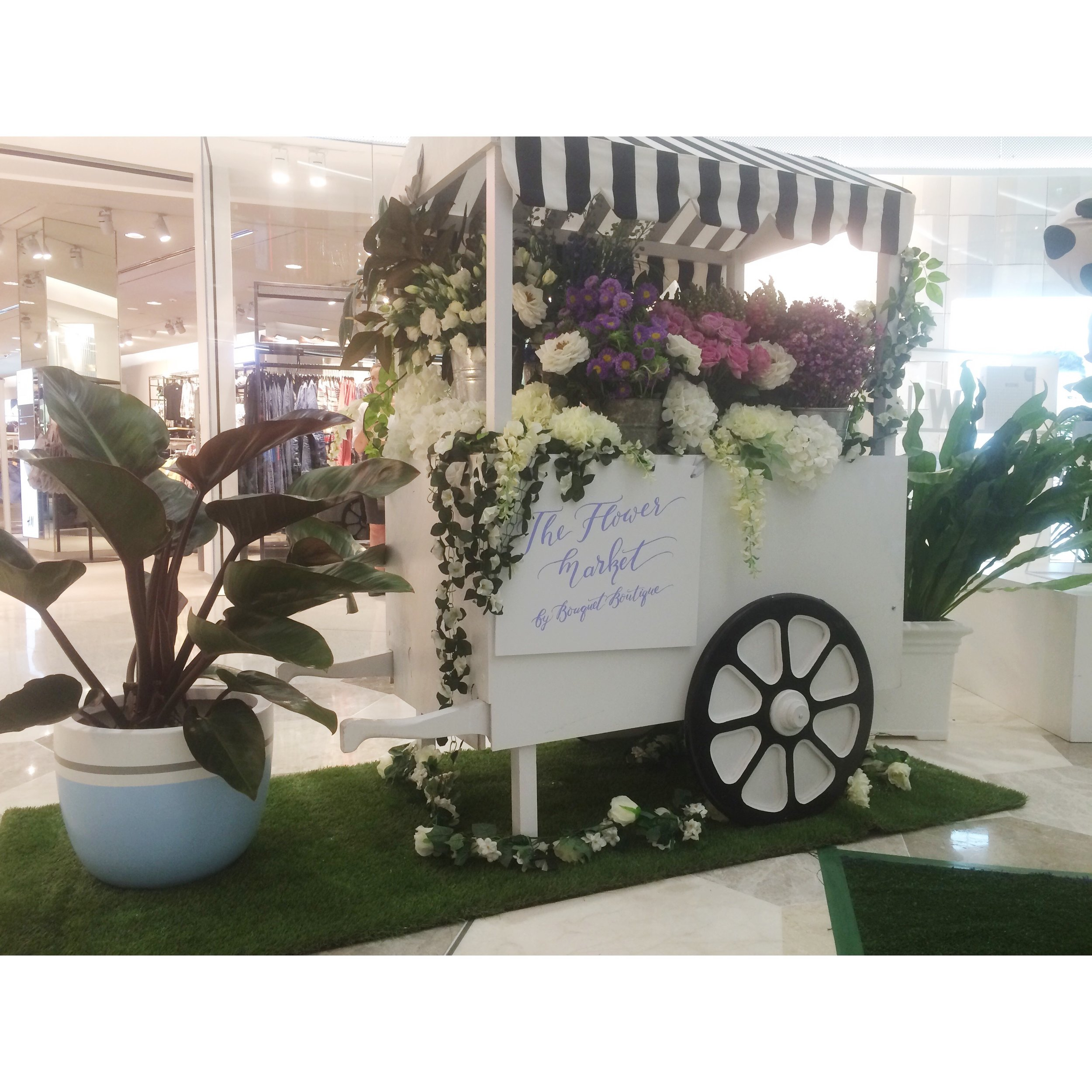 Pots on hire for WhiteWhiteWeddings event at Garden City Shopping centre.jpg