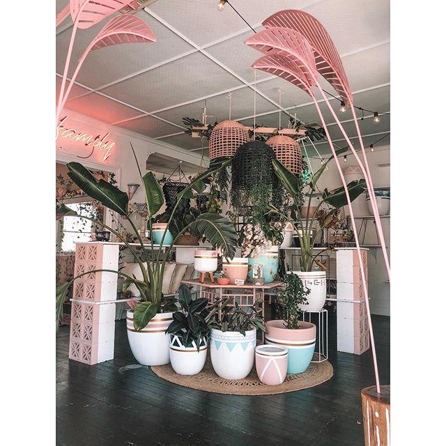 Fresh pots instore now Potheads 💖 open tomorrow 10-4 ✌🏻