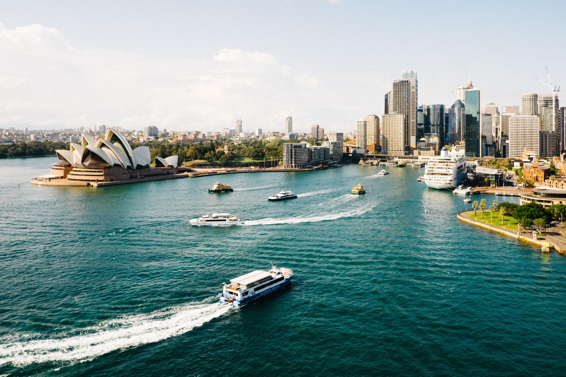 Sharing Minds_Sydney Blog Article 2019.jpg