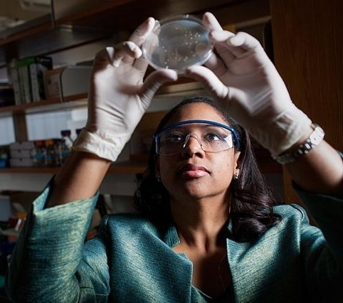 Kristala Jones Prather, shown examining yeast cells in the Prather Lab at MIT, 2013.    Kristala Jones Prather    '94 is Professor, MacVicar Faculty Fellow, and Graduate Admissions Chair in the Department of Chemical Engineering.