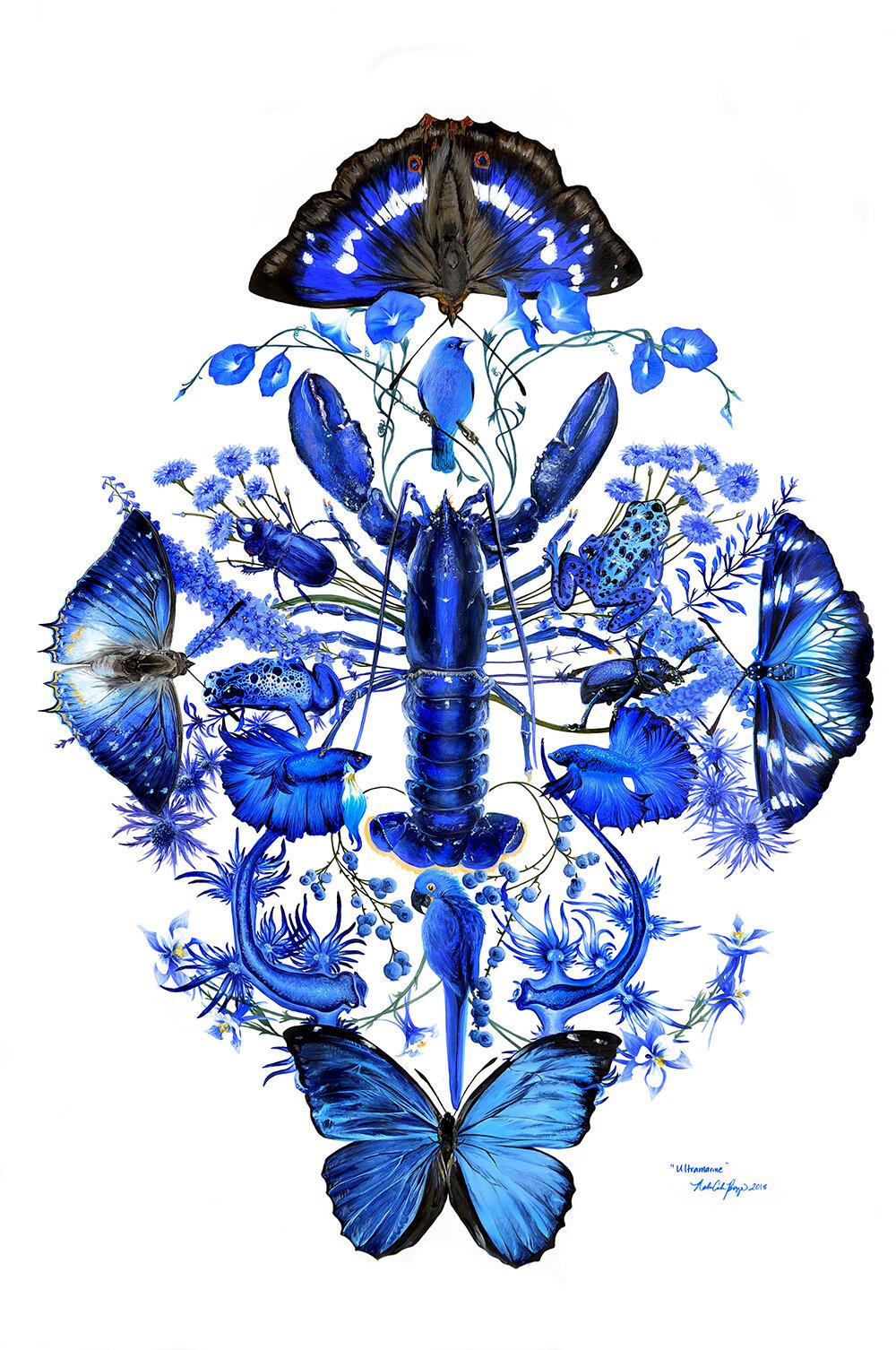 Nalini Asha 2019 Ultramarine.jpg