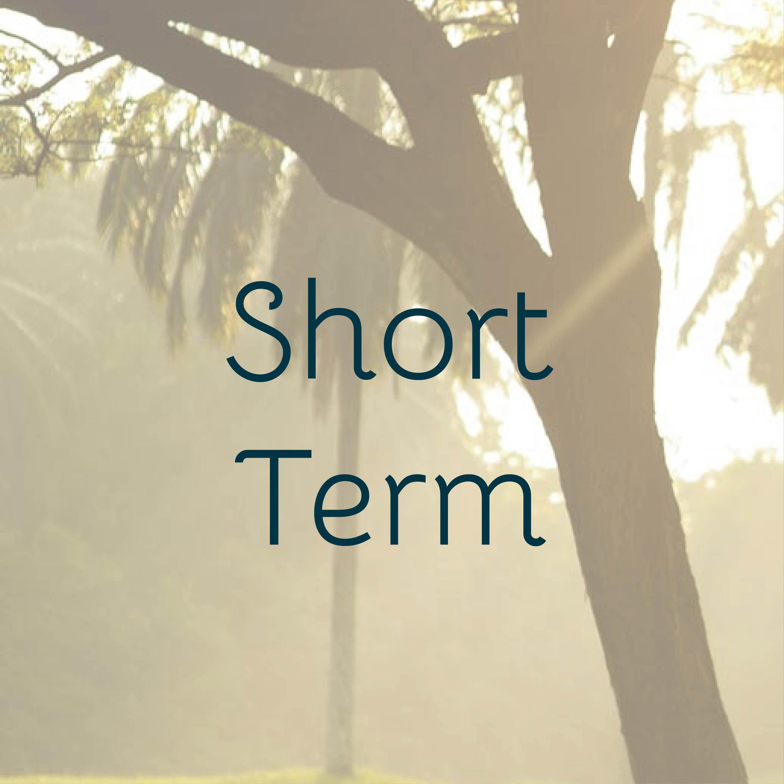 Term Plans-4.jpg
