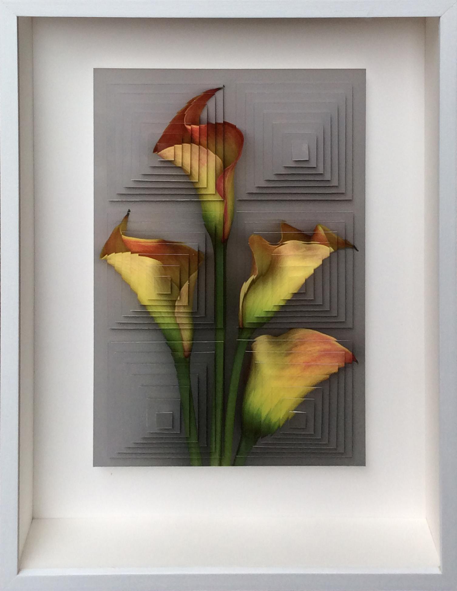 4. Galleria-l'Affiche_Alfred-Drago-Rens_Fiore (14)_2015 - 33,2x25,7 cm.jpg