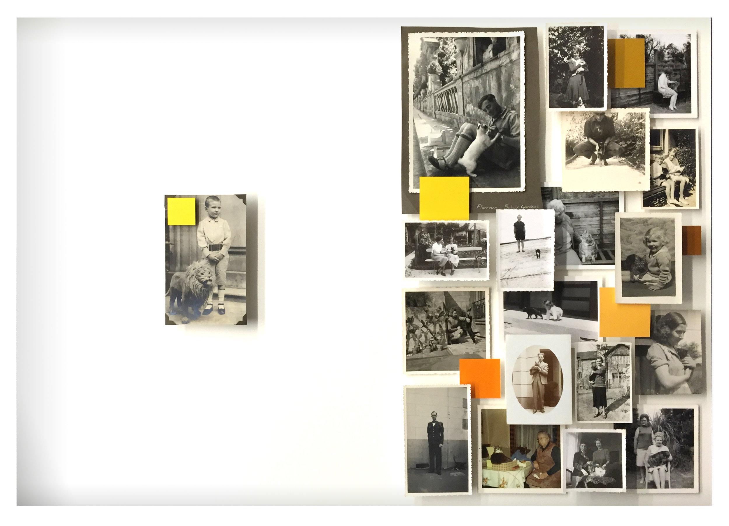13. Galleria-l'Affiche_Alfred-Drago-Rens_Storia-di-un-gatto-che-si-sentiva-leone_2016_62x82cm.jpg