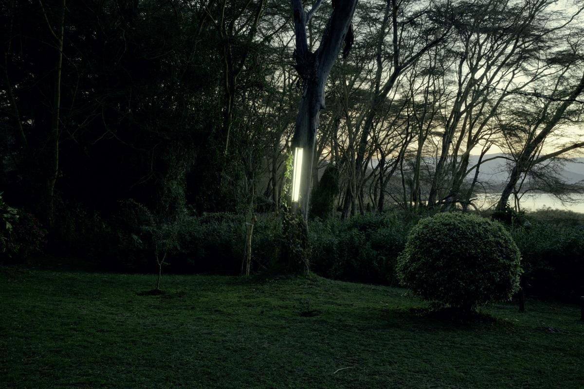 Garden Tree Light (1).jpg