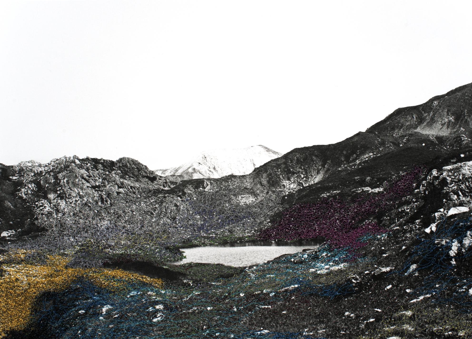 Iris Hutegger