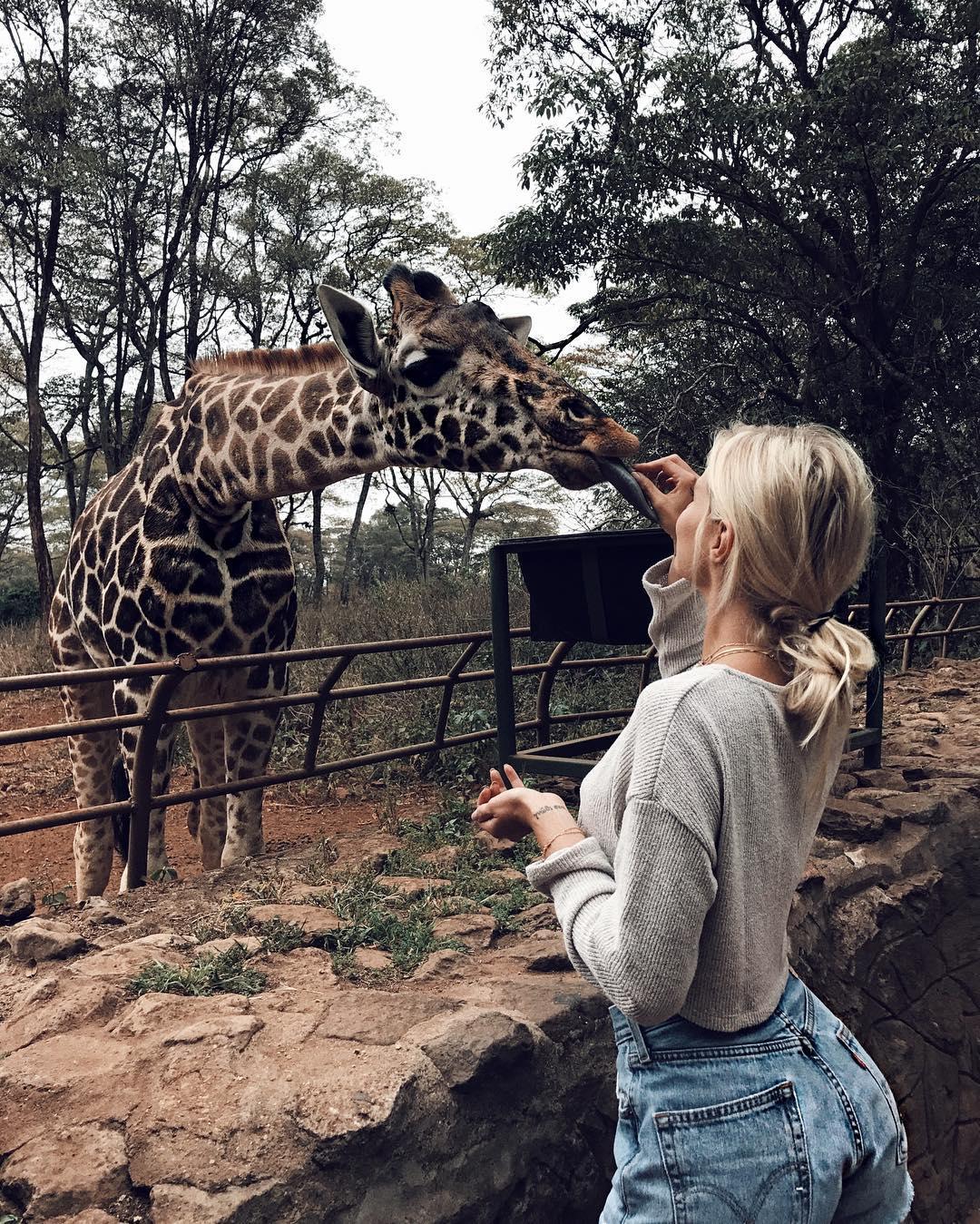 halkin-safaris_n.jpg