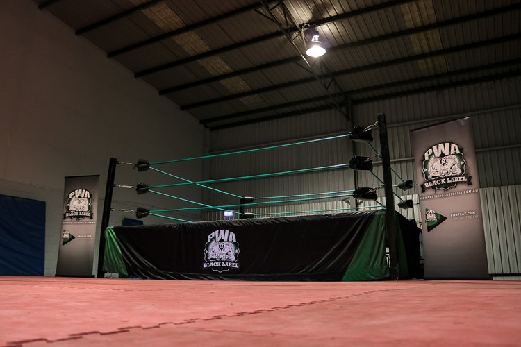 Pro Wresting Academy - Professional Wrestling Training in