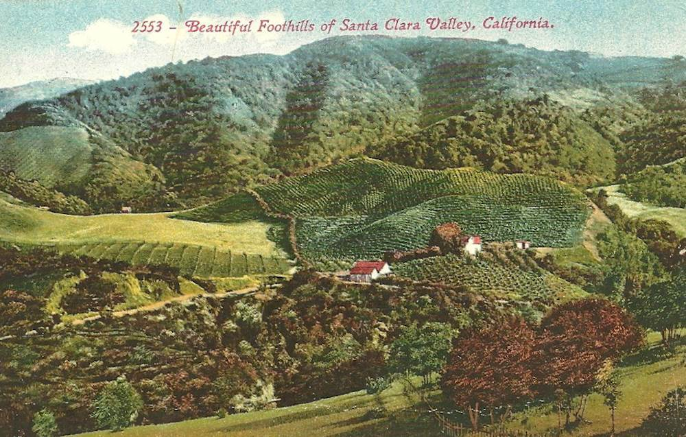 The lost orchards of Silicon Valley.
